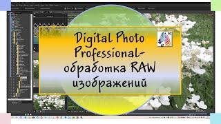 Digital Photo Profession обработка RAW изображений с фотоаппарата Canon