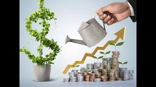 Куда инвестировать? Инвестиции для новичков! Основная информация об инвестициях! #инвестиции