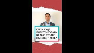 Как и куда инвестировать от 1000 рублей в месяц. Часть 1