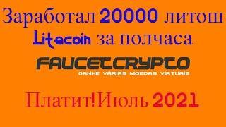 Заработал 20000 литош Litecoin за полчаса