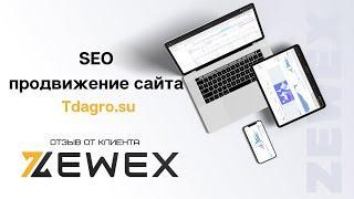 SEO продвижение сайта Tdagro.su - отзыв о компании Zewex