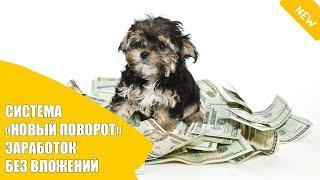 Заработок в интернете без вложений с выводом денег Украина
