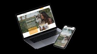 Разработка и продвижение сайта для ветеринарной клиники ВетЛюкс