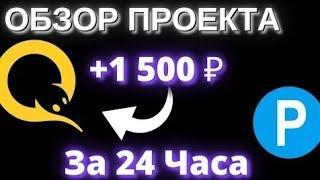 Новый хайп проект платит 165% за 24 часа. Заработок в интернете. Работа в интернете. Инвестиции